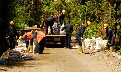 Manejo en sitio: cuadrillas ambientales y brigadas de contingencias